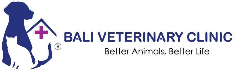 Bali Veterinary Clinic